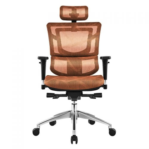 China Factory High Back Ergonomic Chairs (4)