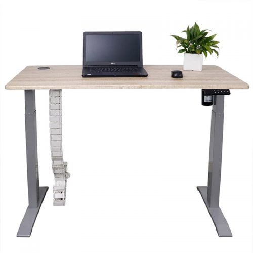 Custom Certificated Electric Standing Height Adjustable Desk