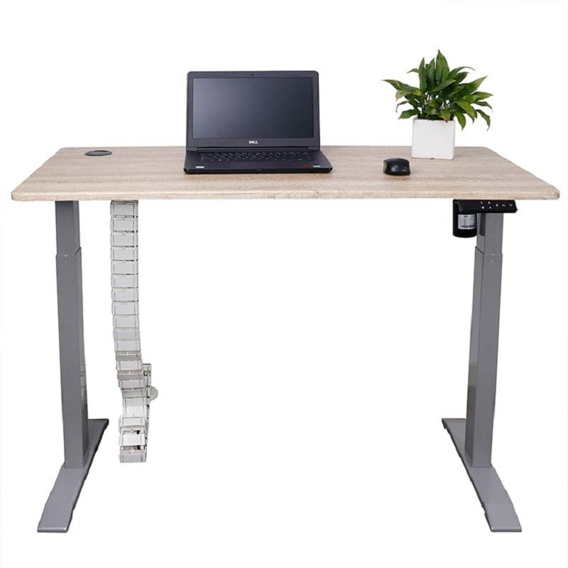 Custom Certificated Electric Standing Height Adjustable Desk