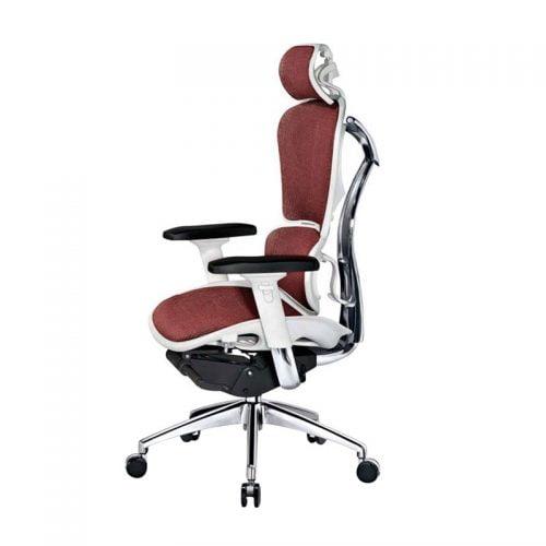 Best Ergonomic Mesh Office Computer Chair Lumbar Support