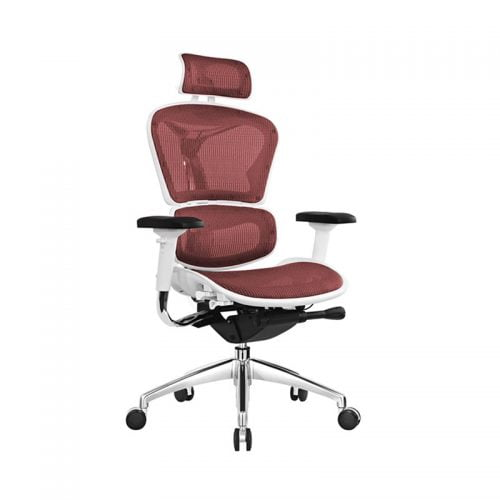 Best Ergonomic Mesh Office Computer Chair Lumbar Support