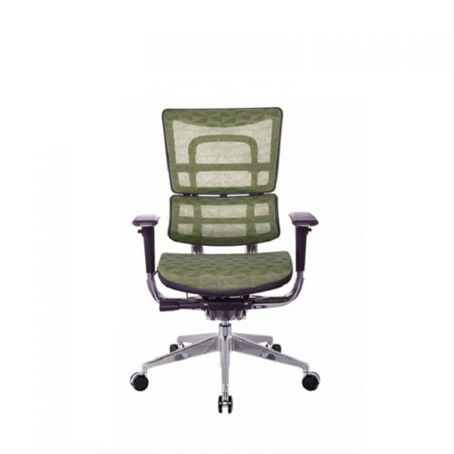 Wholesale Best Modern Multi-Functional Ergo Mesh Chairs 4