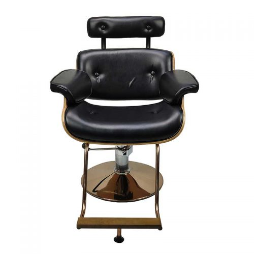 Modern Salon Chair
